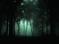 W Ciemnosci Cormac McCarthy Recenzja Zazyjkultury
