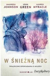 W-sniezna-noc