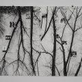 Galeria Miejska -12 Kroków AA - główna kwatera dzieła, 2016, węgiel na kartonie, 150x200cm, foto-Mateusz Faba