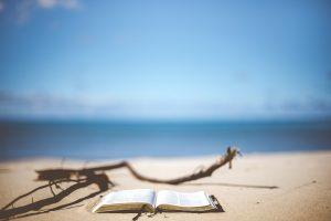 beach-1866992_1280